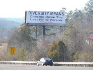 diversity-chasing-down-whites